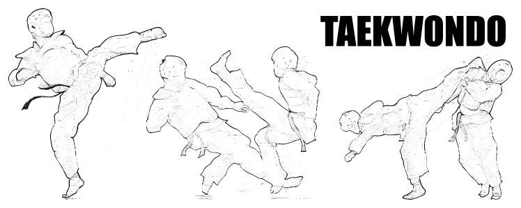taekwondo-Regensburg-kicks